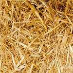 人工芝の施工業者の選択